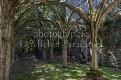 Abbaye de Saint-Michel-en-l'Herm