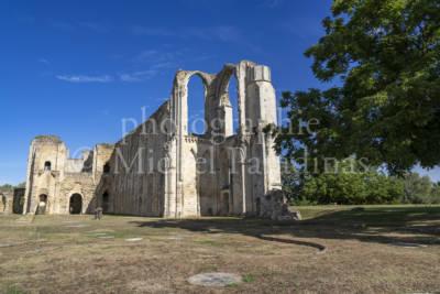 Abbaye Saint Pierre de Maillezais
