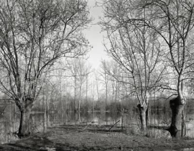 """Marais poitevin – 46°19'44""""N 0°39'42""""WW"""